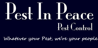 Pest in Peace